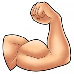 効果的な上腕二頭筋のトレーニング法