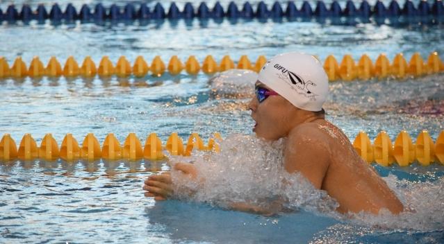 平泳ぎを泳いでいる画像